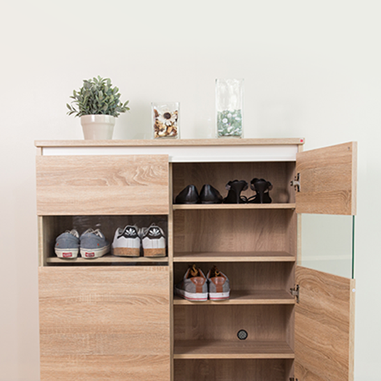 Shoes Cabinets